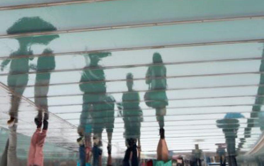 cropped-calatrave.jpg