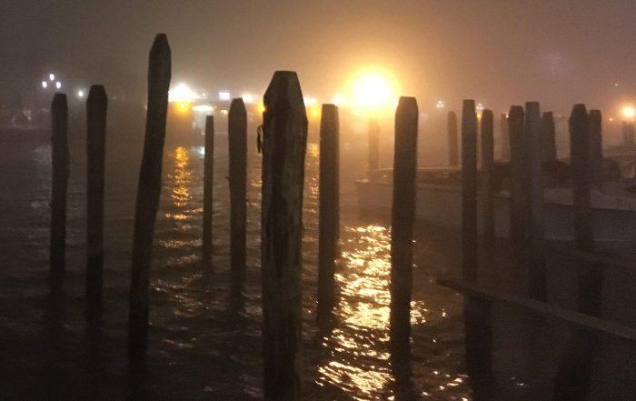 cropped-foggy-light.jpg