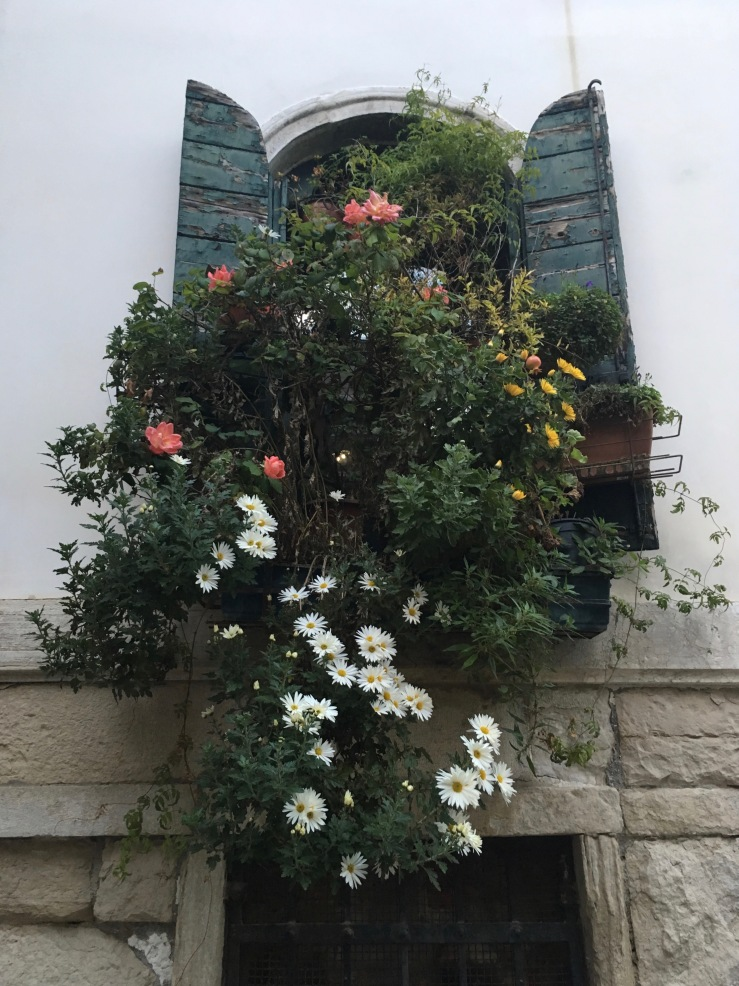 flowered-window-venice