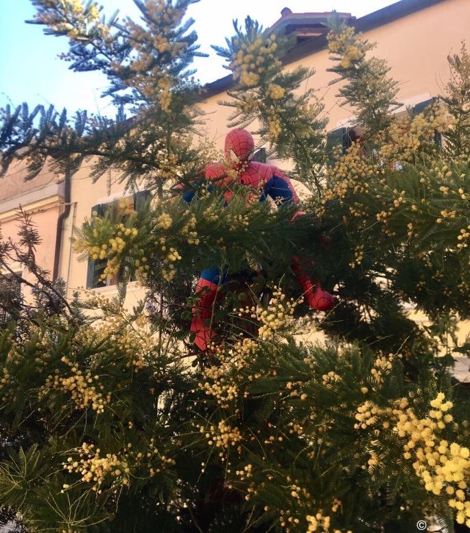 Spiderman in Murano 2