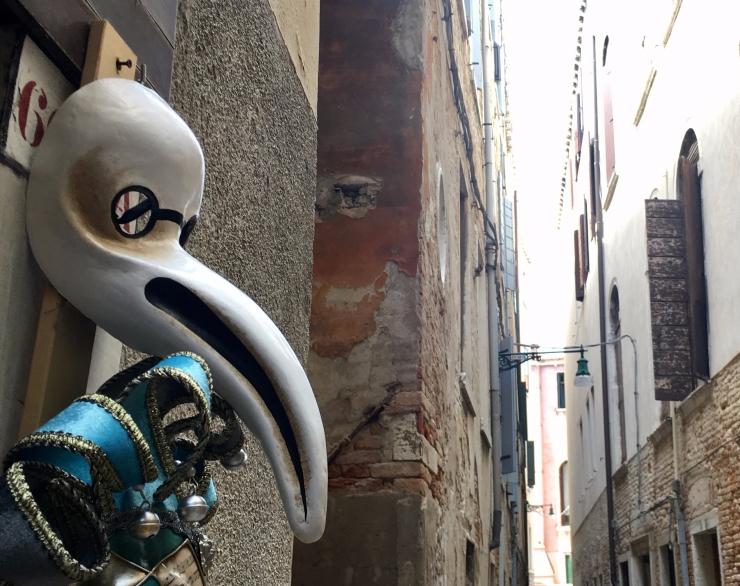 toucan-in-venice.jpg