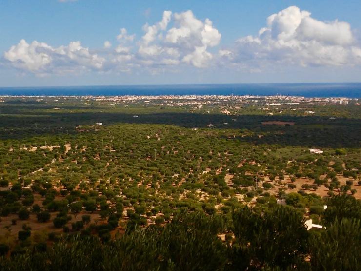 Puglia15